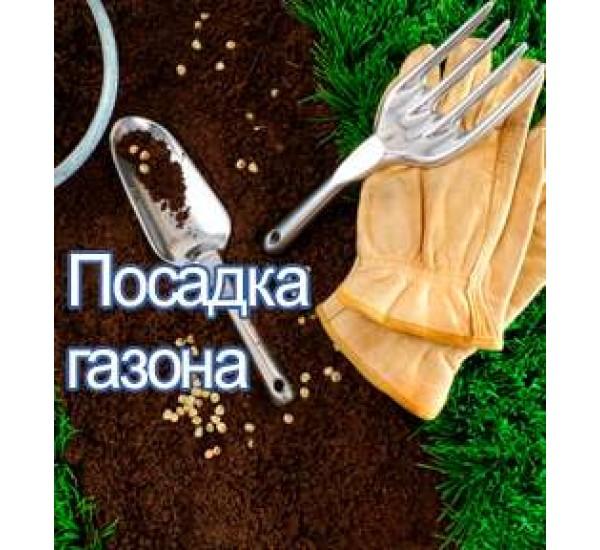 Посадка газона в алматы укладка рулонного газона в Казахстане услуги по озеленению
