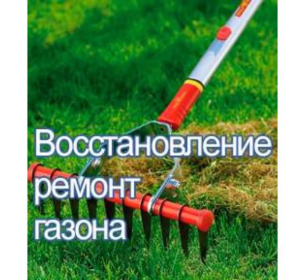 Восстановление ремонт газона в алматы в казахстане услуги по озеленению